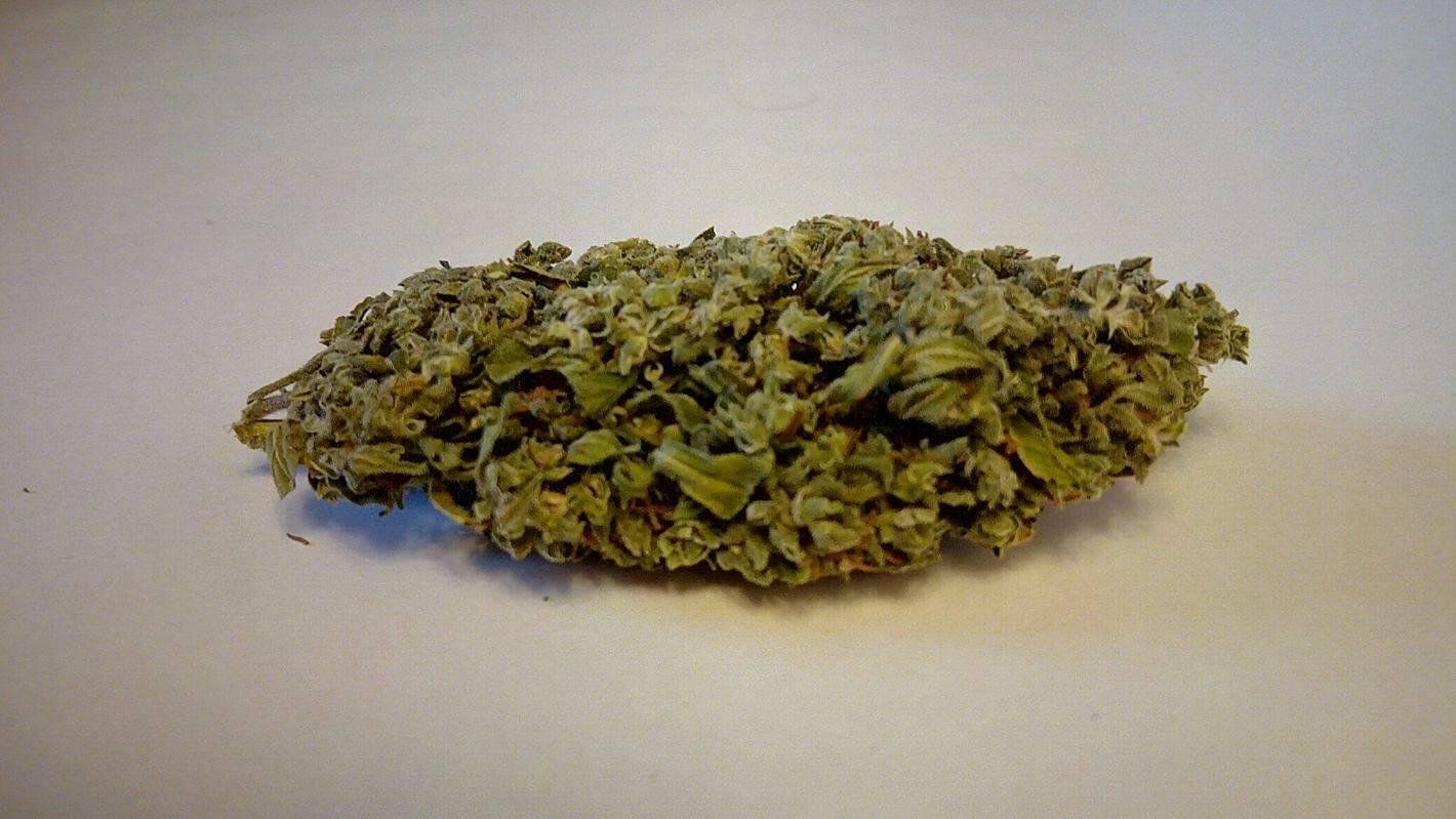 CBD-Rich Hemp Buds Are Bringing Legal Cannabis To Europe