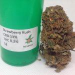 CBD Flower Strain Review: Strawberry Kush (13%CBD) From Hemp Elf