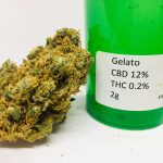 CBD Flower Strain Review: Gelato (12% CBD) from Hemp Elf